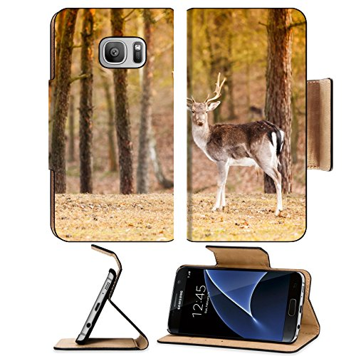 Extreme Habitats (Liili Premium Samsung Galaxy S7 Flip Pu Leather Wallet Case Young male red deer stag in autumn fall forest Animals in natural habitat beauty in nature IMAGE ID 39410980)
