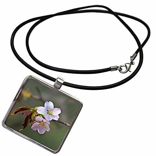 Cherry Blossom Pendant Light in Florida - 2