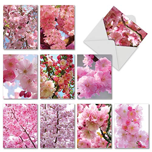 Cherry Blossoms: 10 Assorted Blank All Occasions Greeting Cards Showing Beautifully Detailed Flowering Trees, with Envelopes. AM6861OCB-B1x10