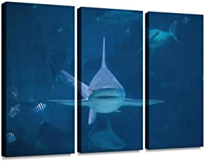 A silvertip Shark Swimming Toward Camera in Aquarium in Sentosa, Print On Canvas Wall Artwork Modern Photography Home Decor Unique Pattern Stretched and Framed 3 Piece