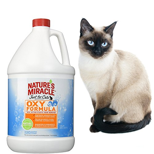 Nature's Miracle Just for Cats Oxy Stain and Odor Remover, F