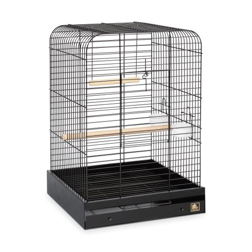 Prevue Pet Products Parrot Cage, My Pet Supplies
