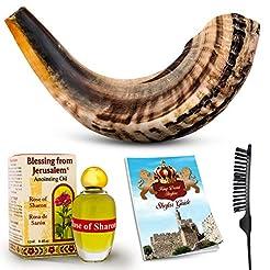 Shofar Horn Instrument - RAM Shofar Ange...