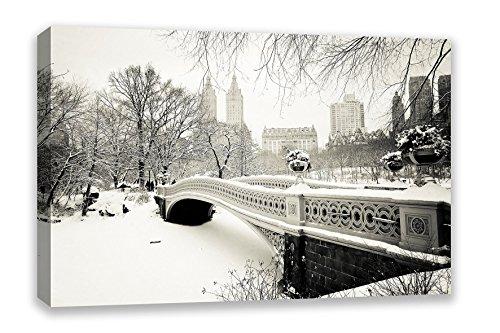 (NEW YORK CITY CENTRAL PARK WINTER SNOW USA CANVAS WALL ART (30