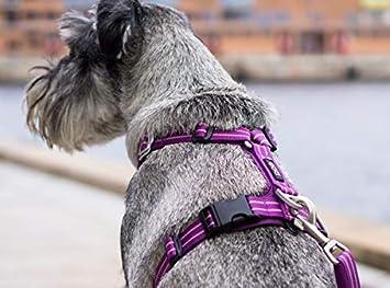 DOG Copenhagen Comfort Walk Air Harness Black WH-BL Taille S