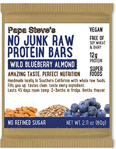 Papa Steve's No Junk Raw Vegan Protein Bars, Wild Blueberry 2.1oz, 10 Count