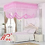 DE&QW Ceiling court mosquito net bed canopy, 1.5m bed 1.8m2m bed Three-door Princess mosquito curtain-D Twin2