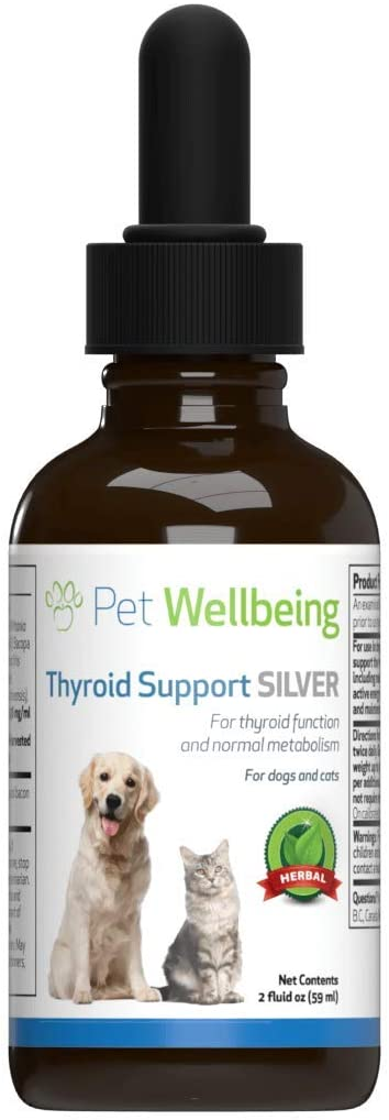 Pet Wellbeing - Thyroid Support Silver for Cats - Natural Support for Hypothyroidism & Under Active Thyroids in Felines - 2oz (59ml)