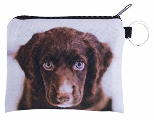 Place Puppy Divers Brown Kukubird Portefeuilles Poussière Sac Print Uxw0nn6q5p