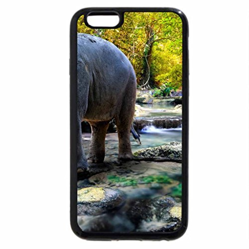iPhone 6S / iPhone 6 Case (Black) Elephant in the Water