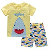 Fiream Baby Boys Cotton Sets Shortsleeve Summer Clothing t-Shirts and Shorts 2 Pieces Sets(18008,4-5YRS)