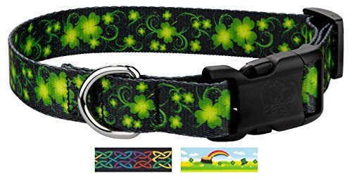 Collar Swirls Dog Designer (Country Brook Petz | Deluxe Clovers in The Wind Dog Collar - Medium)
