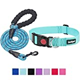beebiepet Classic Nylon Dog Collar with Quick Release Buckle Adjustable Dog Collars for Small Medium Large Dogs with a Free 5 ft Matching Dog Leash (M Neck 14'-19', Turquoise)