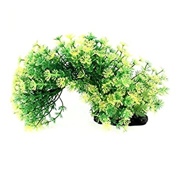 Amazon.com : eDealMax plástico Artificial decoración del acuario hierba Verde Planta 20cm Altura : Pet Supplies