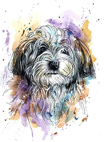 Havanese Watercolor Art Print of Original Painting, Pet Themed Party Nursery Home Wall Decor, Gift for Dog Mom, Dad, Parent; Rainbow Bridge Pet Loss Sympathy Bereavement Housewarming Memorial Gift