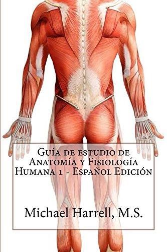 Amazon.com: Guía de estudio de anatomía y fisiología humana 1 ...