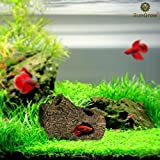 Image of SunGrow Betta Log: Hollow log for fish to hide, play, sleep and breed: Natural look: Purifies water: Great for aquarium decoration with moss