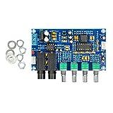 AOSHIKE DC12V-24V 2.1 Channel TPA3116 Subwoofer Amplifier Board High Power Bluetooth Audio Amplifier Board 2x50W+100W