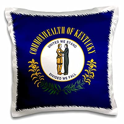 3dRose InspirationzStore Flags - Flag of Kentucky - US American state - United States of America USA - dark blue Commonwealth seal - Pillow Case