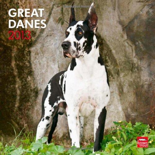 Great Danes 2013 - Dänische Doggen - Deutsche Doggen - Original BrownTrout-Kalender