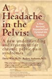 A Headache in the Pelvis, a New, Revised, Expanded and Updated 6th Edition: A New Understanding and Treatment for Chronic Pelvic Pain Syndromes