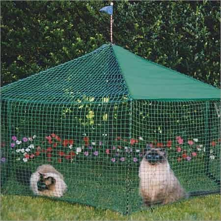 Gazebo Cat (Kittywalk Gazebo Outdoor Cat Enclosure)