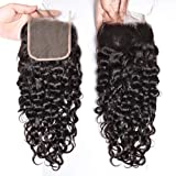 """MSGEM HAIR Brazilian Water Wave Front Lace Closure 8-20 inch Free Part Brazilian Virgin Hair Closure Size 4""""x4"""" 1pc Hair Pieces Natural Look 18in"""