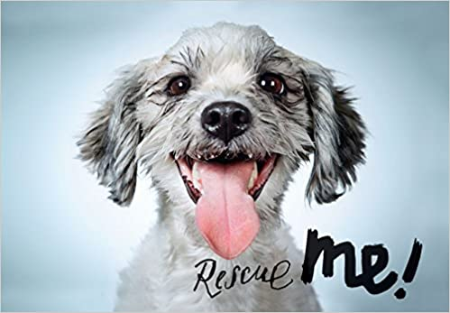 Rescue Me Dog Adoption Portraits and Stories from New York City