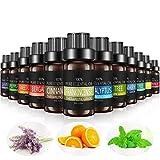 [12 Pack] Aceites Esenciales de Aromaterapia, Aceite Esencial 100% Natural para Humificador y Difusor de Esencias Naturales. 12 diferentes Fragancias, 10 ml por botella. Incluye Caja de Regalo.