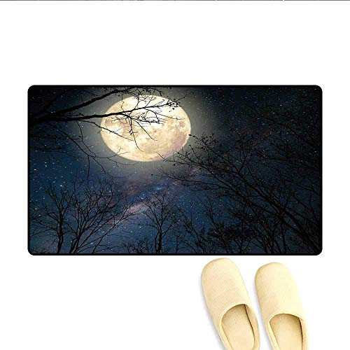 YGUII Door-mat Nocturnal Sky Milky Way Stars Twilight Moon Scenery with Branches Bath Mats for Floors Dark Blue White and Black 16X23.6in (40x60cm) (Milky Flat Way)