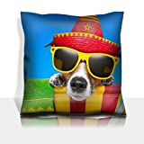 MSD Throw Pillowcase Polyester Satin Comfortable Decorative Soft Pillow Covers Protector sofa mexican dog on vacation relaxing on a deck chair Image 20900251 Customized Tablemats St