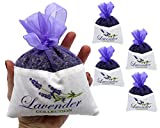 Fresh Harvest 2017 From The French Provence 4 Extra Large Lavender Sachet - 4 Packs - 50 Grams Each - Cozy Pouch Sachet Filled with Dried Lavender Flower Buds - Naturally Scent Fragrance for Closets
