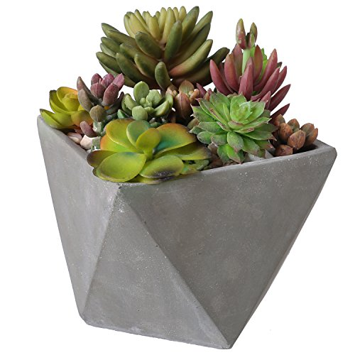 5-Inch Mini Gray Concrete Geometric Design Succulent Cacti Planter Pot with Removable Saucer
