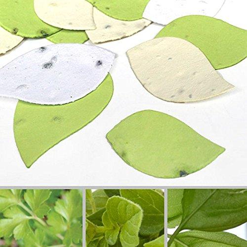 Leaf Shaped Herb Confetti - 380-Piece Bag (1)