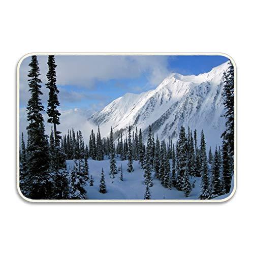 Niaocpwy Non-Slip Outdoor/Indoor Snow Covered Mountains Doormat,20 x 32 inch, Entry Way Shoes Scraper Patio Rug