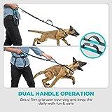 TaoTronics TT-PA006 Retractable Hands Free Dog