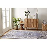 Home Dynamix Premium Sakarya Traditional Area Rug, Oriental Country Blue/Rust 5'2