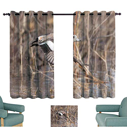 WinfreyDecor Noise Reduction Curtain American Wigeon Set of Two Panels 63