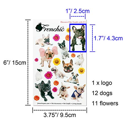 French Bulldog Photo Vivid Image Sticker 2 designs Kawaii Dogs for paper  craft agenda or Luggage decoration Good seals