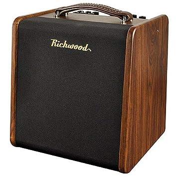 Richwood AC 50 · Amplificador guitarra acústica: Amazon.es: Instrumentos musicales