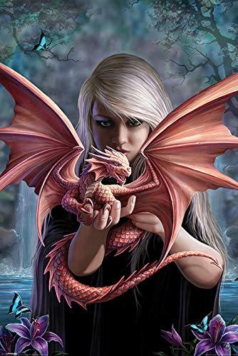 Póster con Dragón Pequeño