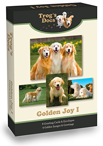 Golden Retriever Greeting Cards: Golden Joy I ()