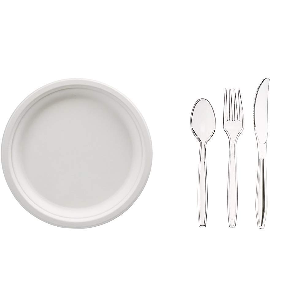 AmazonBasics Compostable Plates, 10-Inch, 500-Count + 360-Piece Clear Plastic Utensil Cutlery Set
