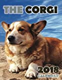 #10: The Corgi 2018 Calendar
