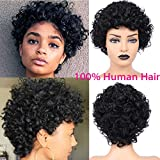 Short Afro Kinky Curly Hair Wig Human Hair Wigs Natural Looking Brazilian Virgin Wig with Free Cap African Fluffy Curly Wig for Black Women 4 inch