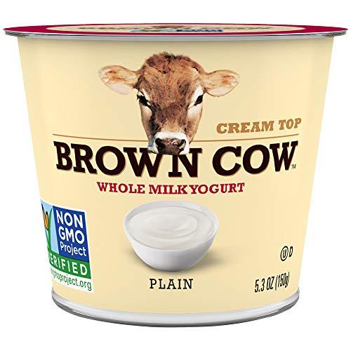 Plain Yogurt