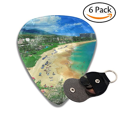 Grghtrghlsd Beautiful Kaanapali Beach Maui Hawaii Classic for sale  Delivered anywhere in USA