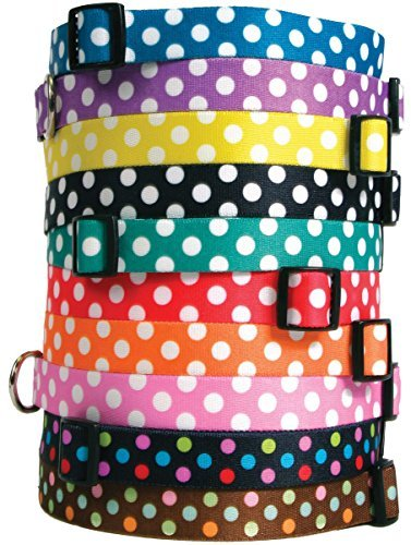 Polka Dot Dog Collar with Tag-A-Long ID Tag System blueeberry Small 10 to 14 inch by Yellow Dog Design