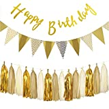 Gold Happy Birthday Decorations Banner and Paper Pennant Banner Triangle Flags with Tissue Paper Tassels Garland 15pcs for Baby Shower, Birthday Party Wall Decorations