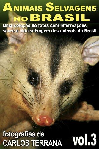 Portugueses No Brasil Costumes (ANIMAIS SELVAGENS NO BRASIL - uma coleção de fotografias com informações sobre a vida e costumes dos animais do Brasil - VOL.3 (ANIMAIS SELVAGENS DO BRASIL) (Portuguese Edition))